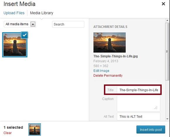 Wordpress Upload Image Bug