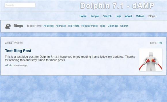 Dolphin Blog Post