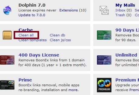Clear Dolphin 7 Cache
