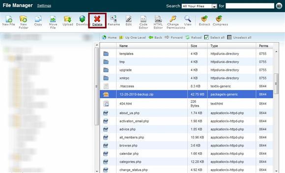 File Manager Delete