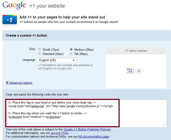 Google +1 Code Page