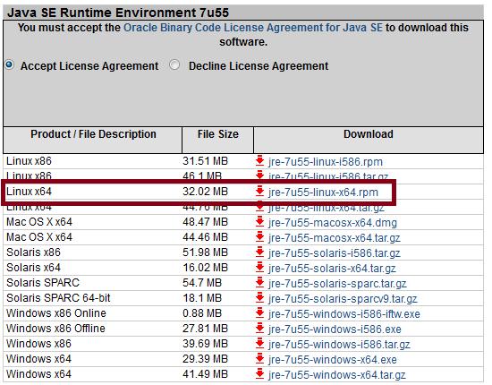 Oracle 64 bit JRE